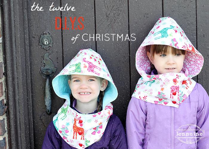 Twelve DIYS of Christmas Title